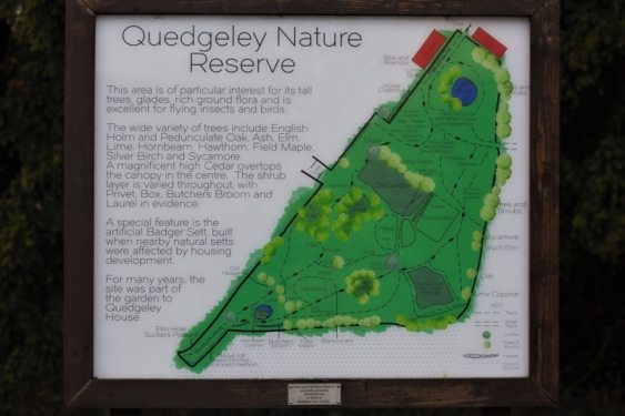 Quedgeley Nature Reserve